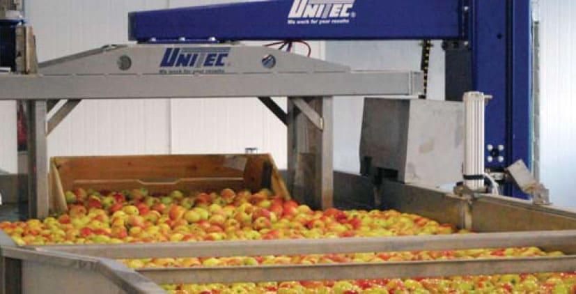 UNI_IMM 900© - робот для разгрузки наполненного продуктом контейнера в приёмную ёмкость и установкой на другой поддон разгруженного контейнера